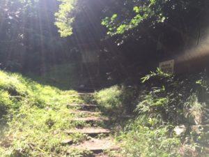 ハイキングコース終点の画像
