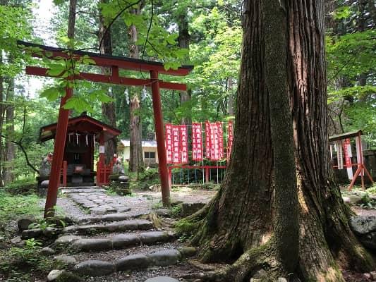 滝尾稲荷神社の画像