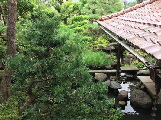 2階から見た庭園の画像