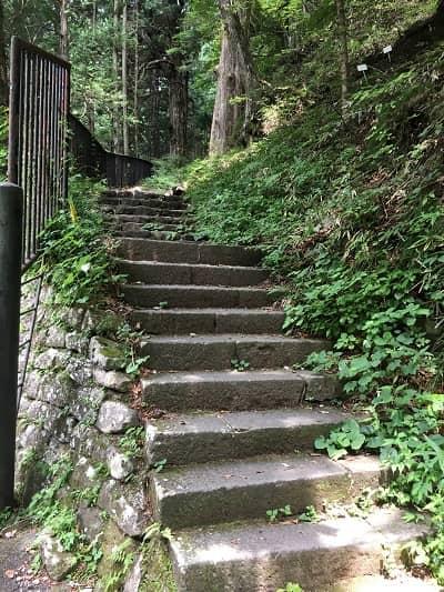 石造りの階段の画像