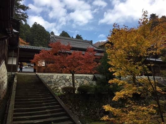 紅葉の永平寺の画像1